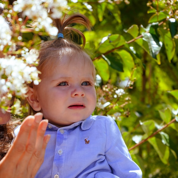 Baby in tree