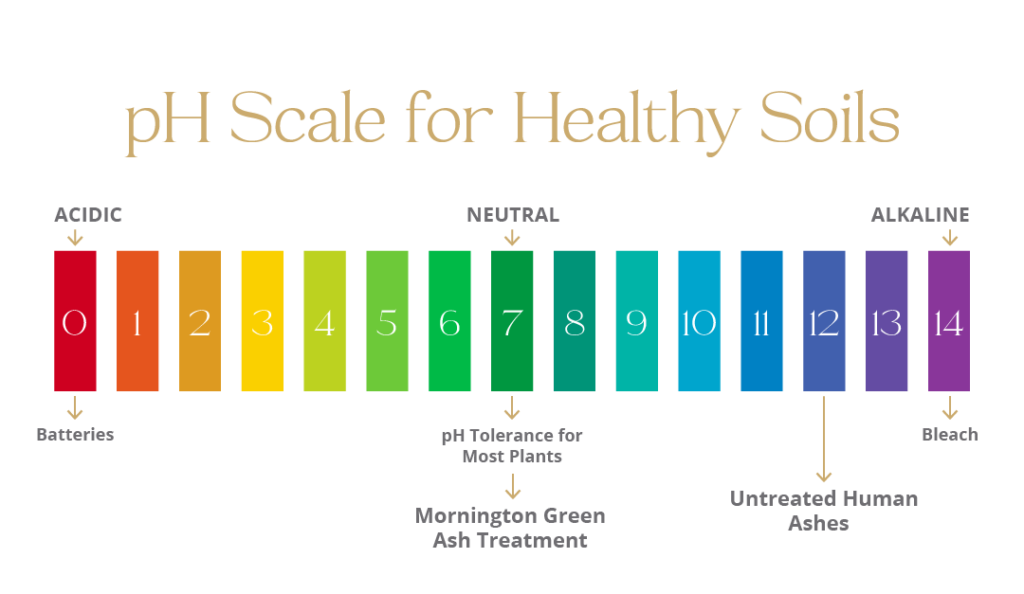 ph-scale-for-healthy-soils