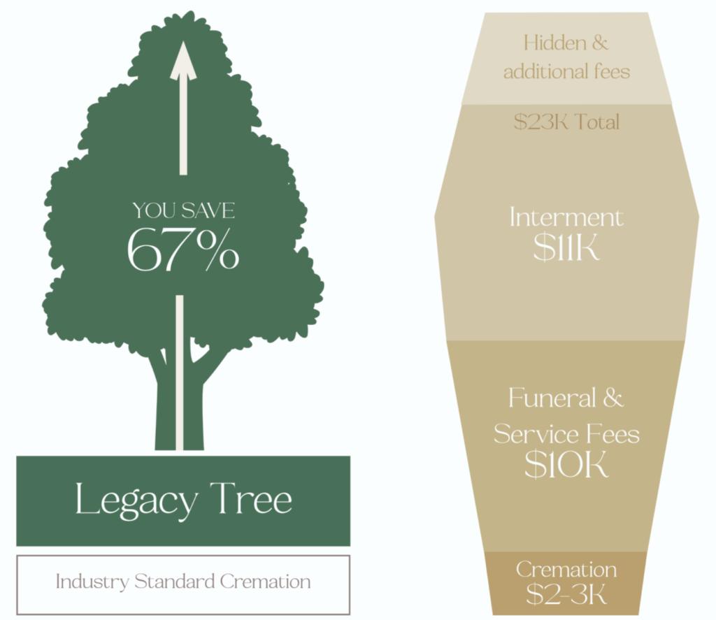 burial-comparison-cremation-vs-coffin