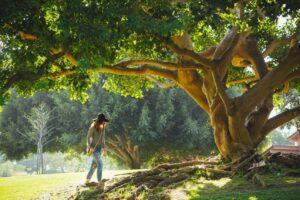 woman visiting memorial garden tree